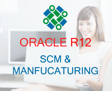 Oracle EBS R12 Manufacturing Course