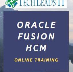 Fusion HCM 28th Batch@12-02-2020